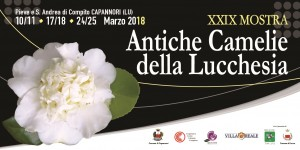 CAMELIE LUCCHESIA 2018 LOCAND