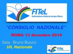 FITEL CONSIGLIO NAZIONALE 131218