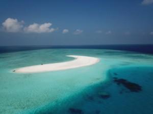 MALDIVE LOCAND
