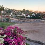 2020 febbraio Sharm El Sheik