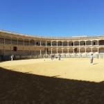 2020 febbraio Tour Andalusia 6