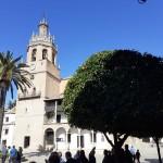 2020 febbraio Tour Andalusia 9