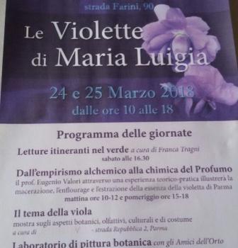 Le violette di Maria Luigia – Orto botanico