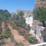 2018 giugno Sicilia Pollina 5