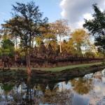2018 novembre Cambogia