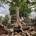 2018 novembre Cambogia 4