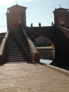2020 ottobre Valli di Comacchio
