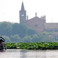 Fiori di loto e Mantova